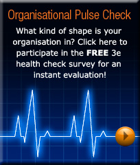 3e Organisational Pulse Check